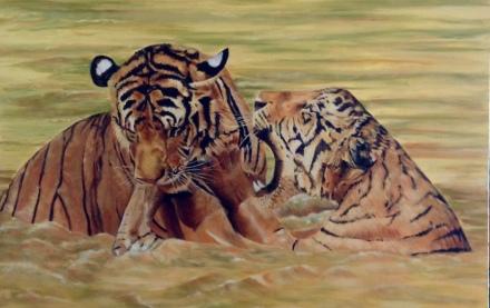 Tigar2